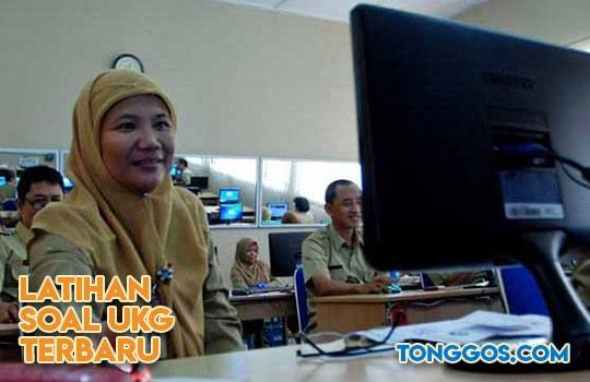 Latihan Soal UKG 2019 Bahasa Indonesia SMA Terbaru Online